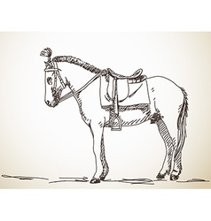 Sketch of horse vector image