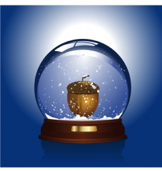 snow globe with acorn vector image vector image