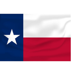 waving flag texas 10 eps vector image