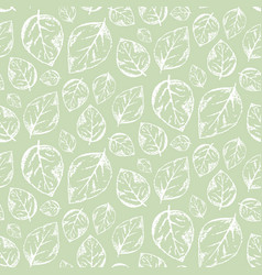 scratched outline white leaves on green pattern vector image vector image