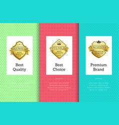 best quality choice premium brand golden label set vector image
