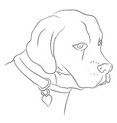 black and white sketch of dog vector image