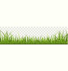 grass border panorama natural lawn or vector image