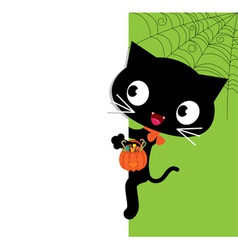 Halloween black cat and a white banner vector image