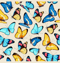 Pattern with high detailed tropic butterfly vector