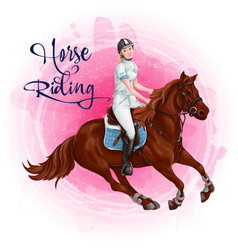woman horseback riding equestrian sport vector image