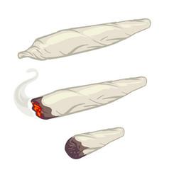 marijuana joint spliff smoking drug cigarette vector image