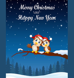 christmas couple owls on the tree branch in night vector image