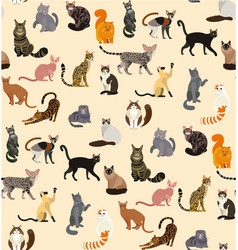 Colorful different cat breeds seamless pattern vector
