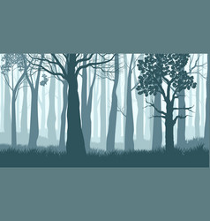foggy forest silhouettes trees in misty vector image