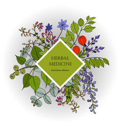 health natural care vintage collection hand vector image