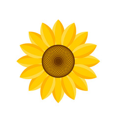 Logo and symbol of sunflower for thanksgiving day vector