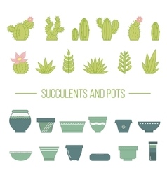 Set of succulent plants cactuses and potsLinear vector image