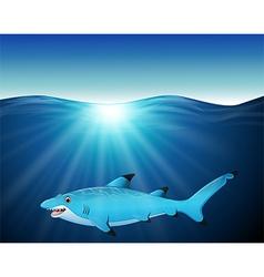 Cartoon shark on the sea vector