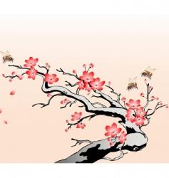 flowering cherry branch vector image
