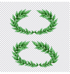 green laurel wreaths transparent set vector image