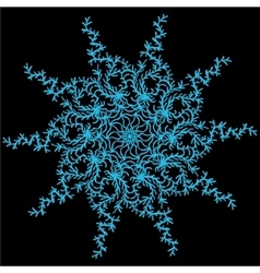 Hand-drawn winter snowflakes on the black vector