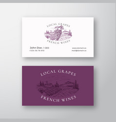 local grapes french wines vineyard retro abstract vector image