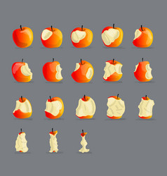 stages of eating apple sketch for your design vector image