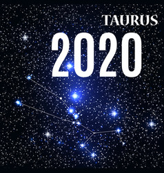 symbol taurus zodiac sign with new year vector image