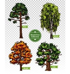 Color Sketch Tree Set vector image vector image