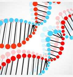 Abstract spiral of dna colorful molecular vector
