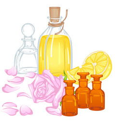 aroma oils vector image