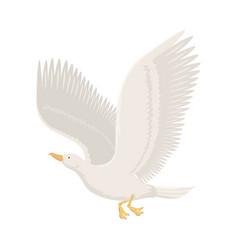 cartoon gull flying bird vector image