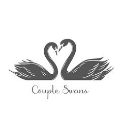 Couple swans glyph icon vector