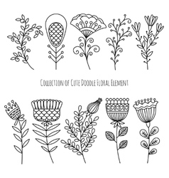 Hand drawn doodle flowers and herbs vector image
