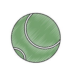 isolated tennis ball vector image