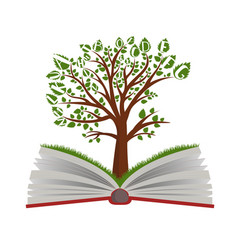 Knowledge tree from open book vector