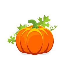 logo and a pumpkin symbol for thanksgiving vector image