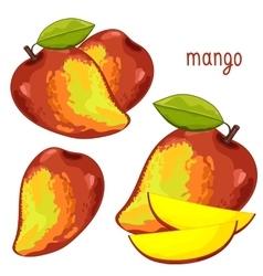 Mango Isolated vector image