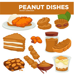 Peanut nut dishes food drink and dessert vector