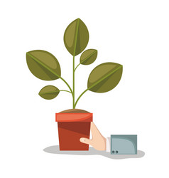 plant pot and hand in white background vector image