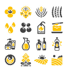 Rapeseed icon vector