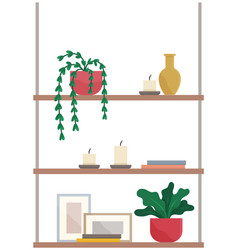 shelves with books potted plants candles vector image