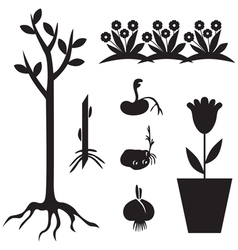 seedling set vector image vector image