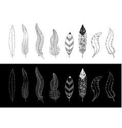 black and white collection of hand drawn feathers vector image