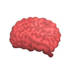 brain or mind side view icon for medical apps vector image