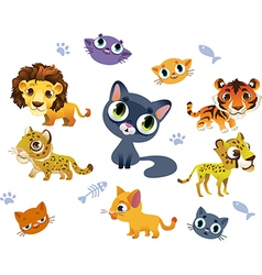 collection wild cats vector image