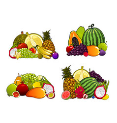 Exotic farm fruits tropical fruity desserts vector