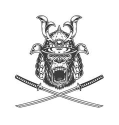 ferocious gorilla head in samurai helmet vector image