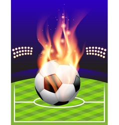 Fire Soccer Field vector image