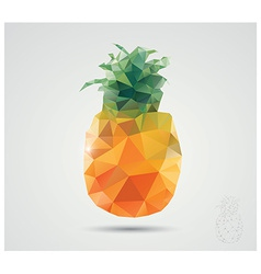Geometric polygonal fruit triangles pineapple vector image