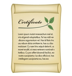 Old bio certificate vector