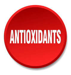 antioxidants red round flat isolated push button vector image