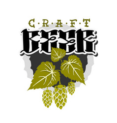 craft beer hand drawn design with hops and leaves vector image