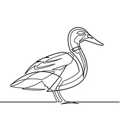 duck continuous line vector image